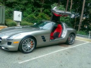 Gull Wing Beauty